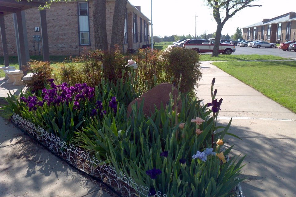 Bellaire Apartments Lawton Fort Sill OK Garden