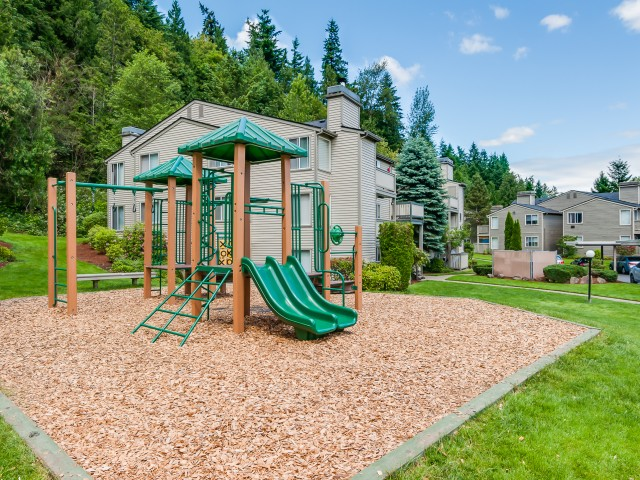 Image of Children's Playground for Colony at Bear Creek