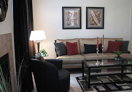 Spring Valley Apartment Living Room
