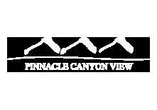 Pinnacle Canyon View