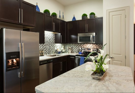 Granite kitchen counters at Domain by Windsor Apartments in Houston TX