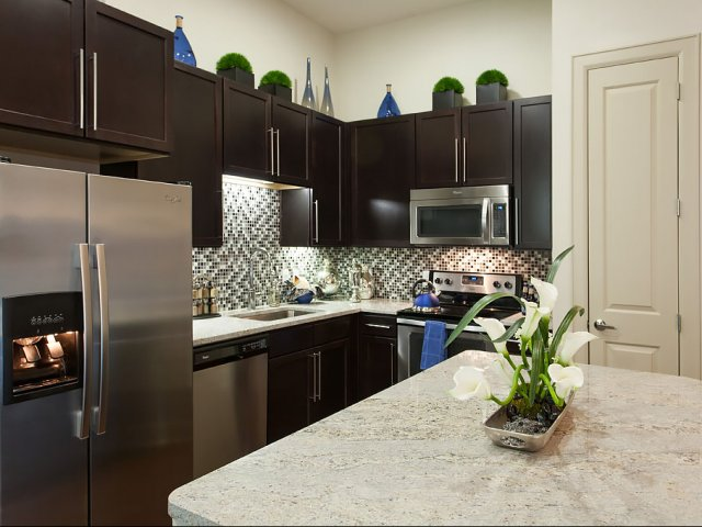 Kitchen at Domain by Windsor Apartments in Houston TX