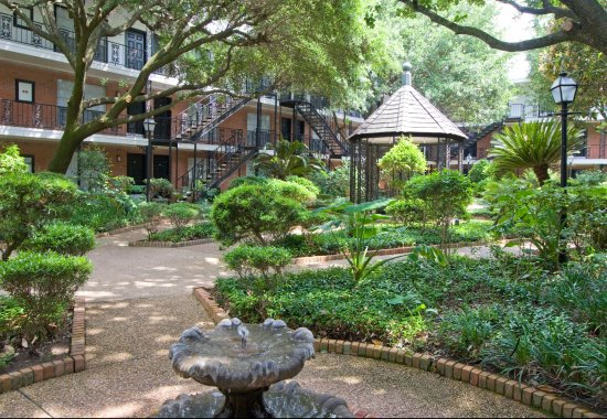 Professionally manicured landscaping at Allen House Apartments in Houston TX