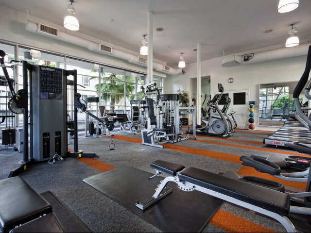 Image of 24 hour fitness center with state-of-the-art fitness equipment for sunset + vine