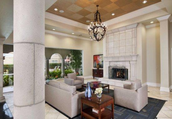 Lounge at Windsor at Aviara Apartments in Carlsbad CA