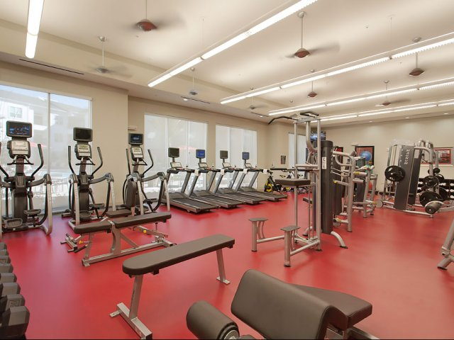 Image of 24 hour Innovative Fitness Center with Individual Cardio Theaters and Free Weights for Domain by Windsor