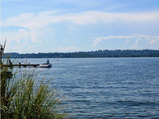 Image of Stunning views of Lake Washington for Tera Apartments