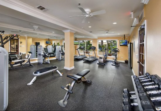 Gym at Windsor Lofts at Universal City Apartments in Studio City
