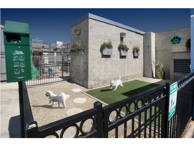 Outdoor pet park at Sunset and Vine Apartments in Hollywood CA