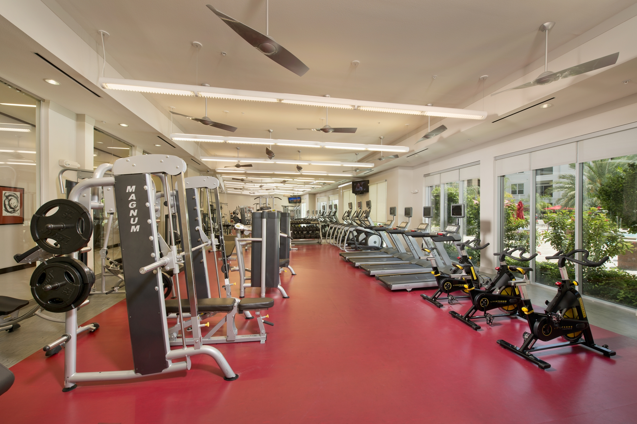 Fitness center at Domain by Windsor Apartments in Houston TX