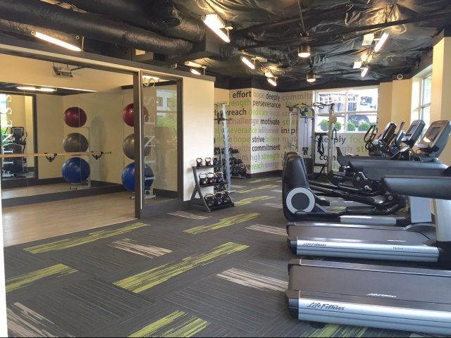 Image of Brand New 24-hour Fitness Center for Tera Apartments