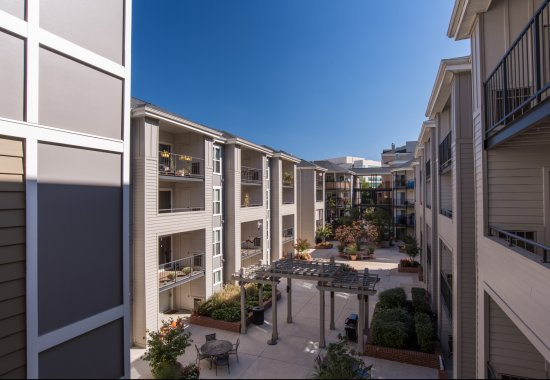 Exterior of Windsor at Shirlington Village Apartments in Arlington VA