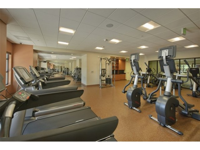 Image of 24-hour fitness studio with treadmills, elliptical machines, bicycles, free weights, weight machines, and televisions for The Manhattan