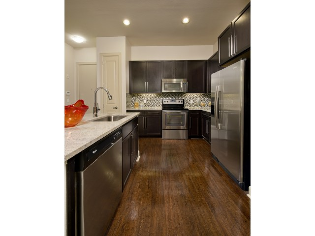 Gourmet kitchen at Domain by Windsor Apartments in Houston TX