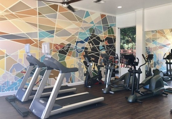 Gym at Pavona Apartments in San Jose CA