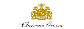 Clarcona Groves