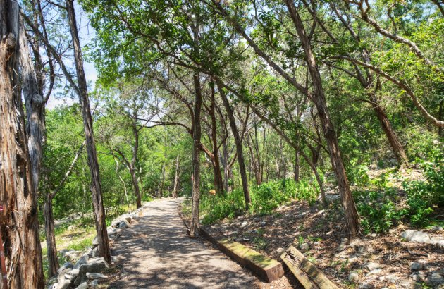 Enjoy a short stroll or a long hike with easy access to Great Hills hiking trail