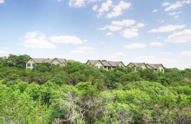 Gorgeous greenbelt views are available in select homes