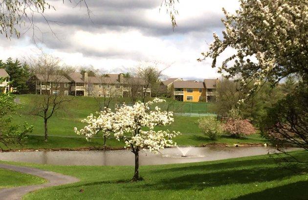 Orchard of Landen