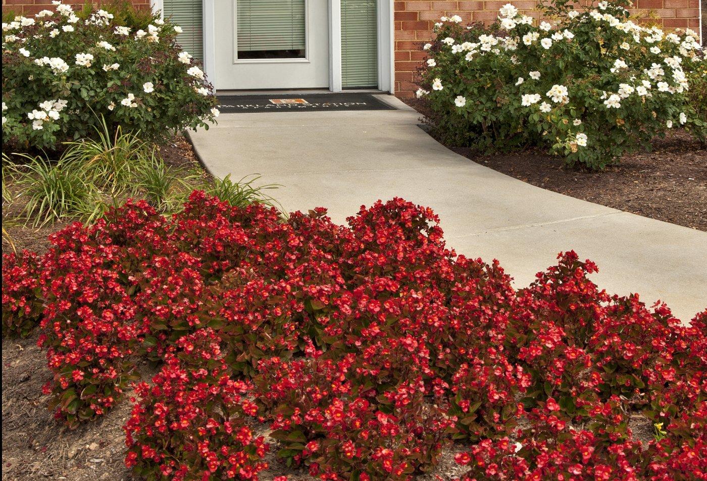 Flowers   Parkland Station Apartments