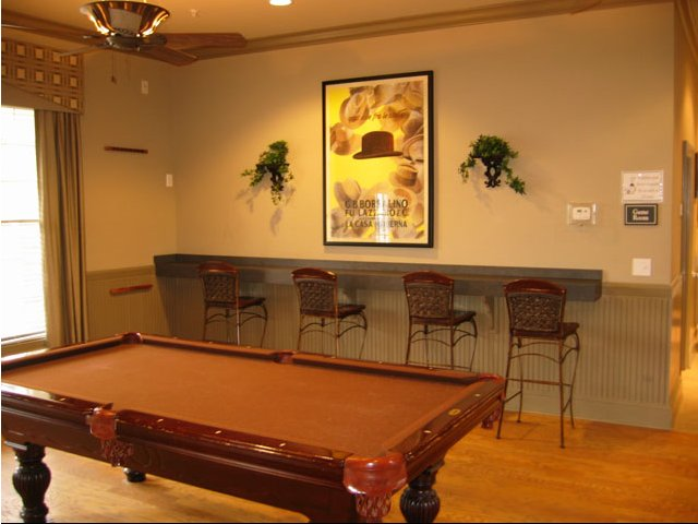 Image of Billiards for River Ridge at Canton