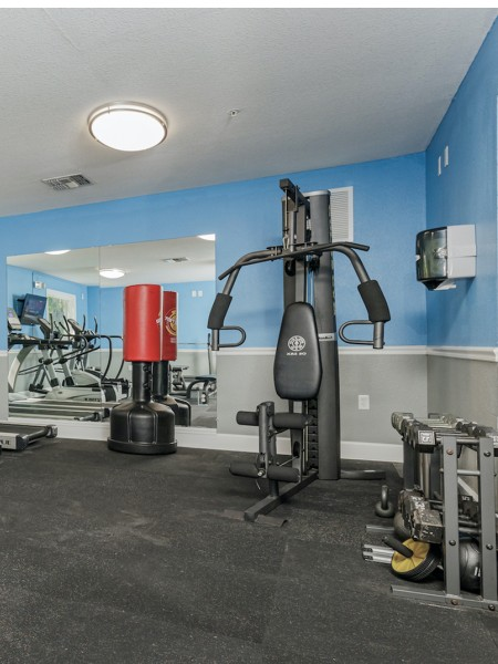community gym with chest press and boxing equipment