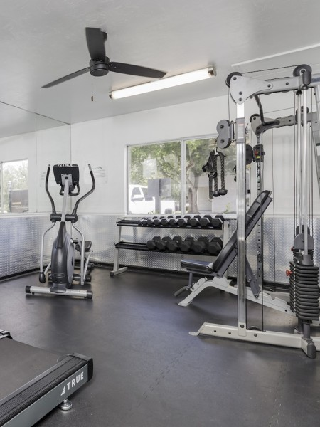 Gym with treadmill, cycling machine, weights and more.