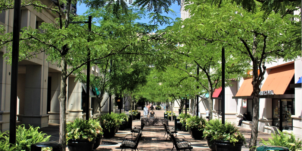 Courthouse Plaza | Arlington VA | Luxury Apartments Arlington VA