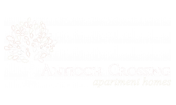 Antioch Crossing Property Logo is a tree with the words Antioch Crossing Apartment homes
