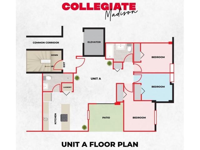 3 Bedroom 2 Bath Apartment - Style A