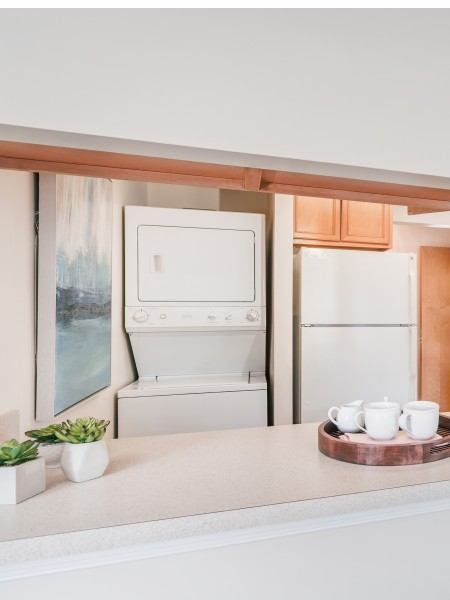 In Unit Washer & Dryer | Alexandria VA Luxury Apartments | Edlandria