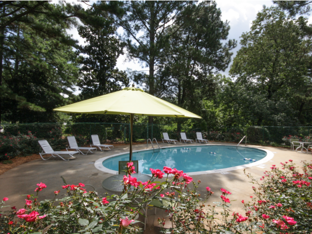 Image of Swimming Pool for Southern Oaks