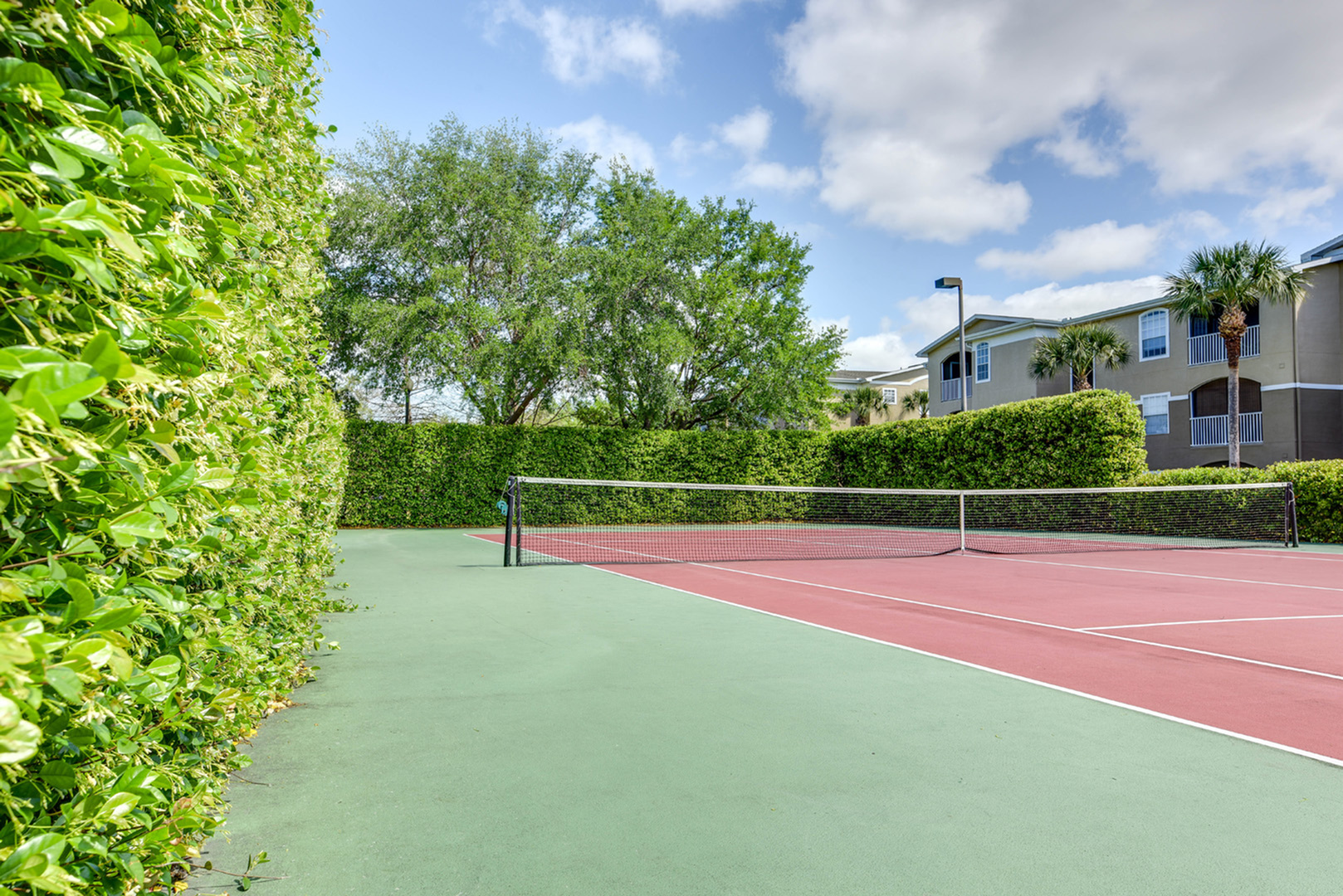 Tennis court surrounded by tall bushes.  Trees and building in background.