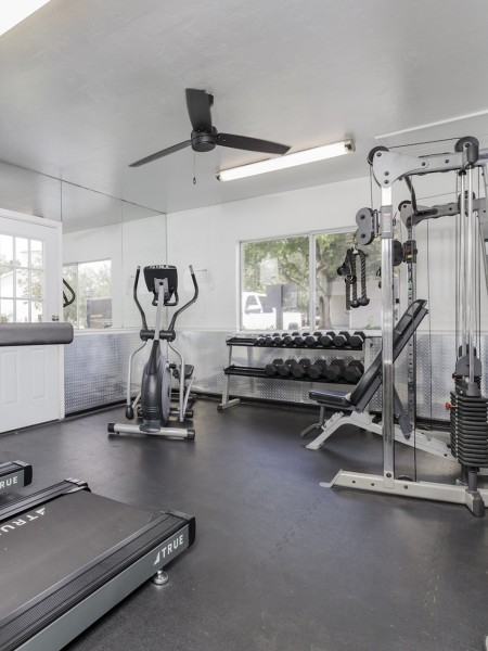 Community Gym with treadmill and bench press.