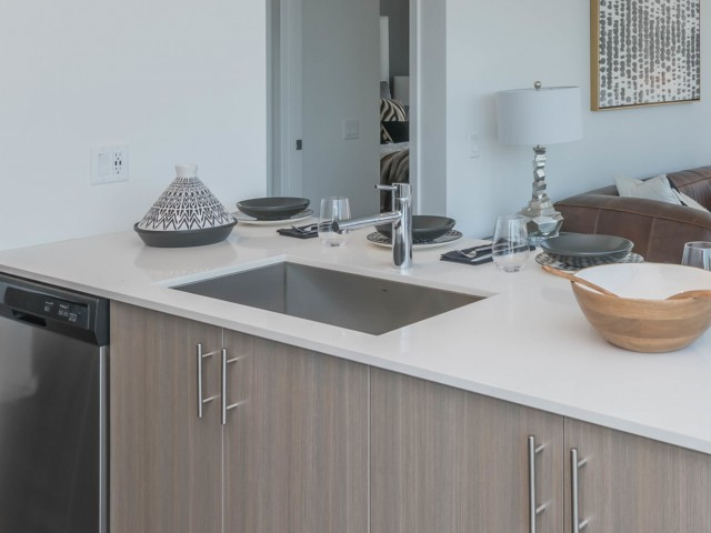 Image of Large Single Basin Stainless-Steel Sinks for Eleven 40