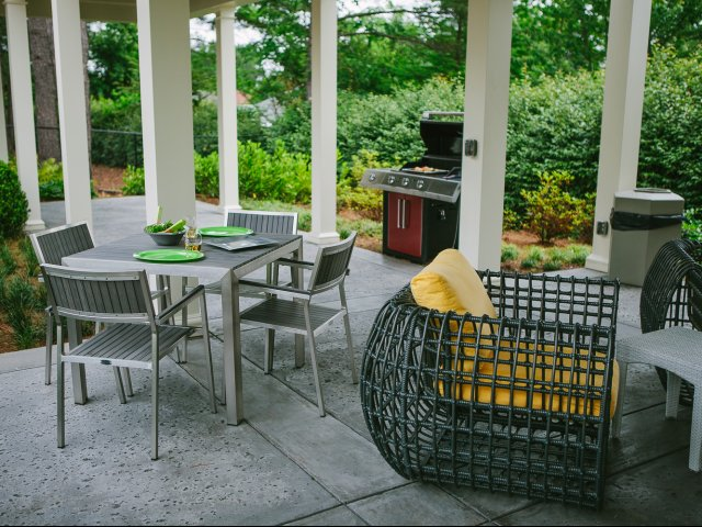 Image of Outdoor Grill Area for The Meadows