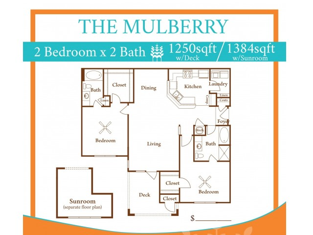 2X2 Mulberry