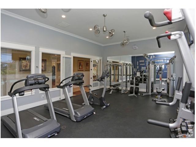 Firtness center showing 2 treadmills, 1 bike, 1 squat machines, 1 smith machine, free weights, and vertical mixed abdominal and upper-body workout station