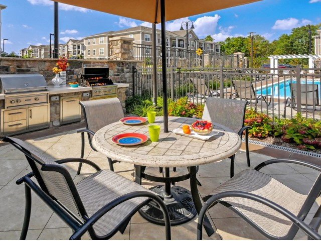 Image of Gas Grilling Patio & Outdoor Lounges for Palmer View Apartments