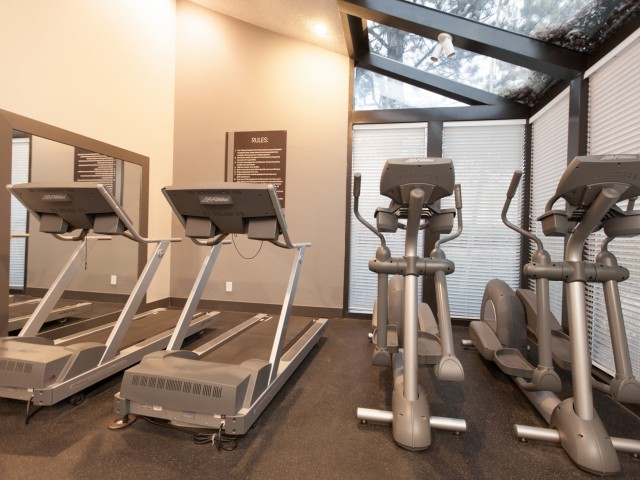 Image of Fitness Center with Free Weights and Cardio Room for Alta Springs Apartments
