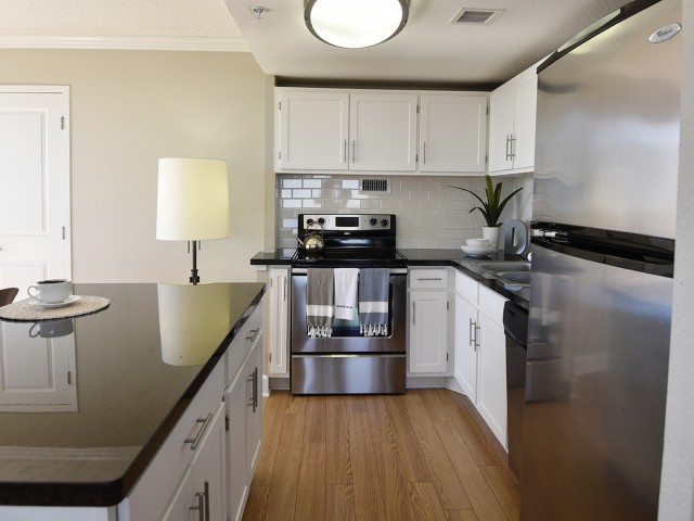 Image of Stainless Steel Appliances for Houston House