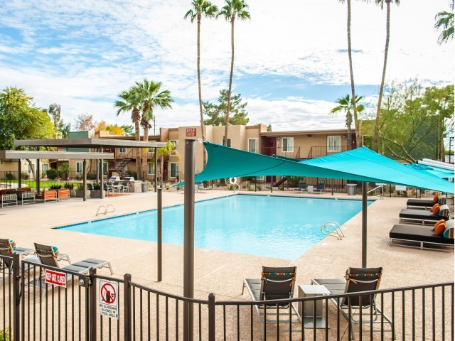 Image of Three Swimming Pools for Scottsdale Gateway II