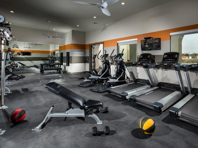 Image of Modern, Professionally Equipped Fitness Center for Solaire