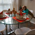 Dog in Dining Room|Apartment in San Antonio, TX|Laurel Canyon Apartments