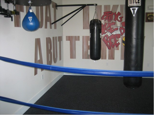 Image of Boxing Ring for The Quaye at Wellington
