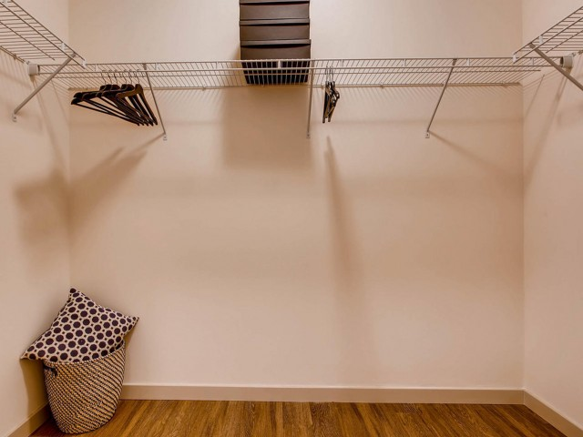 Image of Large Closets for VUE25 Apartments