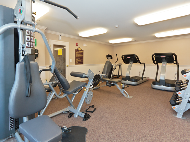 High-impact fitness center with weights & cardio