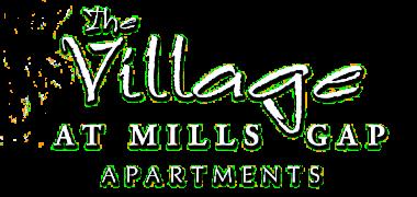 The Village at Mills Gap