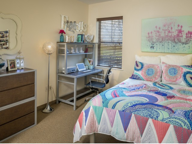 5 Essentials for Your Student Living Space-image