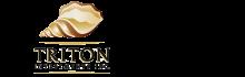 Triton Investments Logo